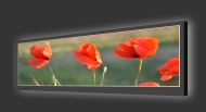 Design Leuchtbild horizontal 116