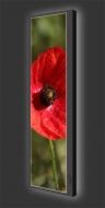 Design Leuchtbild vertikal 501