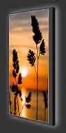 Design Leuchtbild XL vertikal 536