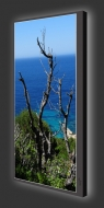 Design Leuchtbild XL vertikal 561