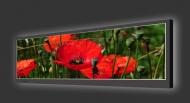 Design Leuchtbild horizontal 157