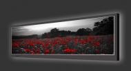 Design Leuchtbild horizontal 131