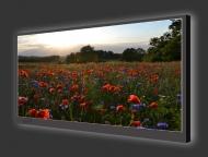 Design Leuchtbild XL horizontal 131
