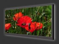 Design Leuchtbild XL horizontal 157